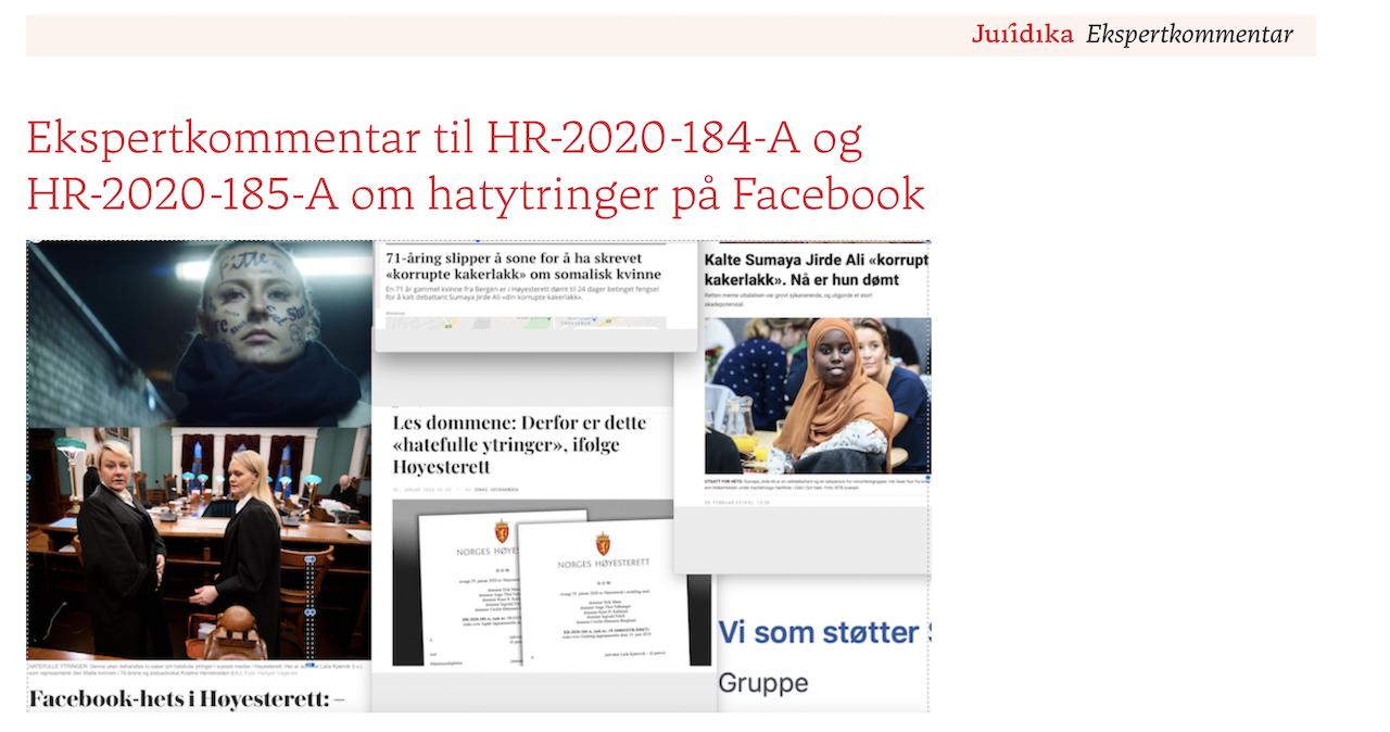Hatefulle ytringer - grensen mellom ytringsfrihet og diskrimineringsvern - kommentar til HR-2020-2133-A