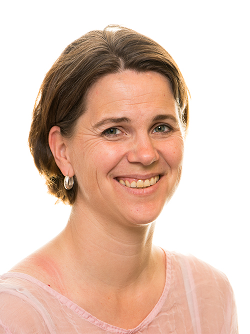 Grunnlovsforslag har druknet i valgkampen