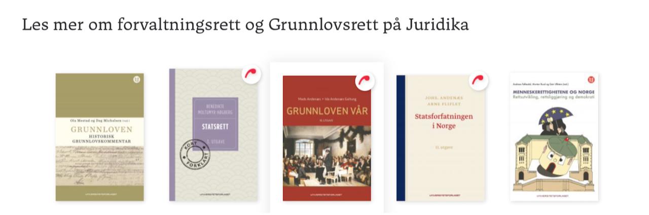 Krever ny kommisjon for rettsstaten etter korona