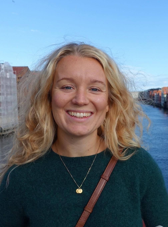 Klimasøksmål på norsk, nederlandsk og engelsk